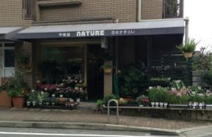 甲陽園_花のナチュレ